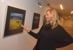 2017.12.07. - Izland - Altmann B. Szilvia természetfotós kiállítása